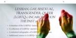 Lesbian, Gay, Bisexual, Transgender, Queer (LGBTQ+) Incarceration: The Past 20 Years by Katelyn Bireline, Maria Virginia Diebolt, Hannah Goergens, Molly Kubaszyk, and Mar McAree