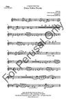 Dona Nobis Pacem - SATB Ensemble Parts | 20-96412