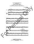 Three Fiddle Tunes   20-95940